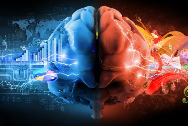 cervella sinistra